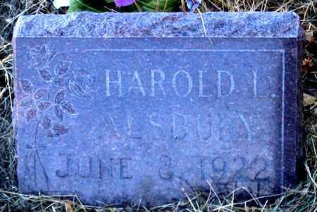 ALSBURY, HAROLD L. - Dundy County, Nebraska   HAROLD L. ALSBURY - Nebraska Gravestone Photos