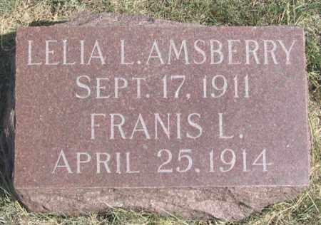 AMSBERRY, LELIA L. - Dundy County, Nebraska   LELIA L. AMSBERRY - Nebraska Gravestone Photos