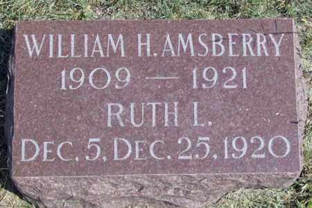 AMSBERRY, WILLAIM H. - Dundy County, Nebraska | WILLAIM H. AMSBERRY - Nebraska Gravestone Photos