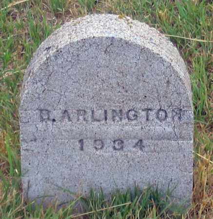 ARLINGTON (ALLINGTON?), BERT - Dundy County, Nebraska | BERT ARLINGTON (ALLINGTON?) - Nebraska Gravestone Photos