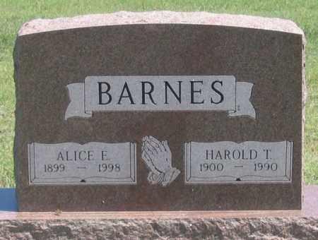 FISH BARNES, ALICE E. - Dundy County, Nebraska | ALICE E. FISH BARNES - Nebraska Gravestone Photos