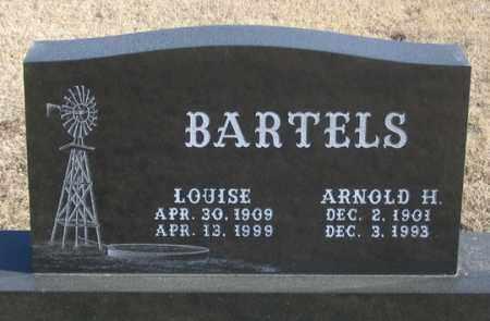 ROSCHEWSKI BARTELS, LOUISE - Dundy County, Nebraska | LOUISE ROSCHEWSKI BARTELS - Nebraska Gravestone Photos