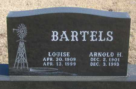 BARTELS, LOUISE - Dundy County, Nebraska | LOUISE BARTELS - Nebraska Gravestone Photos