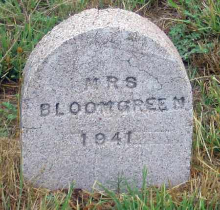 BLOOMGREEN (BLOOMGREN?), RUTH IRENE - Dundy County, Nebraska | RUTH IRENE BLOOMGREEN (BLOOMGREN?) - Nebraska Gravestone Photos