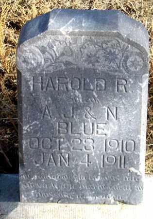 BLUE, HAROLD R. - Dundy County, Nebraska | HAROLD R. BLUE - Nebraska Gravestone Photos