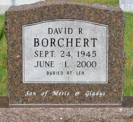 BORCHERT, DAVID ROBERT - Dundy County, Nebraska | DAVID ROBERT BORCHERT - Nebraska Gravestone Photos