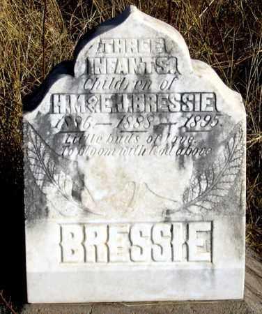 BRESSIE, INFANT 1895 - Dundy County, Nebraska   INFANT 1895 BRESSIE - Nebraska Gravestone Photos
