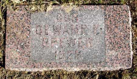 BREWER, DEWANE E. - Dundy County, Nebraska | DEWANE E. BREWER - Nebraska Gravestone Photos