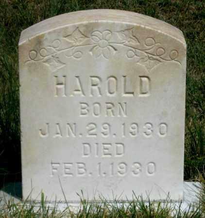 BROWN, HAROLD A. - Dundy County, Nebraska | HAROLD A. BROWN - Nebraska Gravestone Photos
