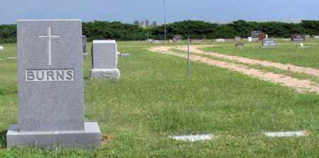 BURNS, MICHAEL FAMILY GRAVE SITE - Dundy County, Nebraska | MICHAEL FAMILY GRAVE SITE BURNS - Nebraska Gravestone Photos