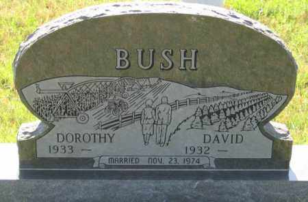BUSH, DAVID - Dundy County, Nebraska | DAVID BUSH - Nebraska Gravestone Photos