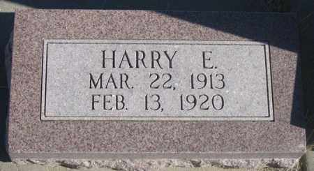 BUSKING, HARRY E. - Dundy County, Nebraska   HARRY E. BUSKING - Nebraska Gravestone Photos
