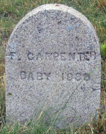 CARPENTER, F. BABY 1936 - Dundy County, Nebraska | F. BABY 1936 CARPENTER - Nebraska Gravestone Photos
