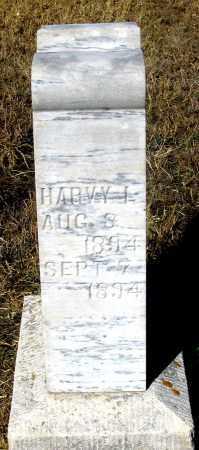 COOLEY, HARVY L. (HARRY L. ?) - Dundy County, Nebraska | HARVY L. (HARRY L. ?) COOLEY - Nebraska Gravestone Photos