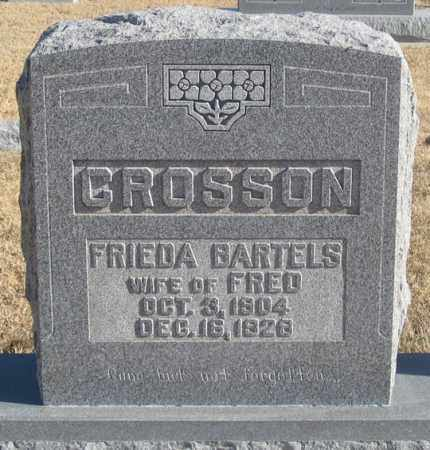 CROSSON, FRIEDA - Dundy County, Nebraska | FRIEDA CROSSON - Nebraska Gravestone Photos