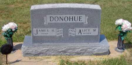 IVEY DONOHUE, ALICE M. - Dundy County, Nebraska | ALICE M. IVEY DONOHUE - Nebraska Gravestone Photos