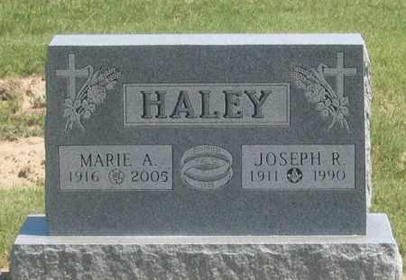 STAMM HALEY, MARIE A. - Dundy County, Nebraska | MARIE A. STAMM HALEY - Nebraska Gravestone Photos