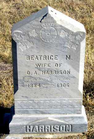 HARRISON, BEATRICE MINNIE - Dundy County, Nebraska | BEATRICE MINNIE HARRISON - Nebraska Gravestone Photos