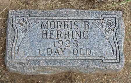 HERRING, MORRIS B. - Dundy County, Nebraska | MORRIS B. HERRING - Nebraska Gravestone Photos