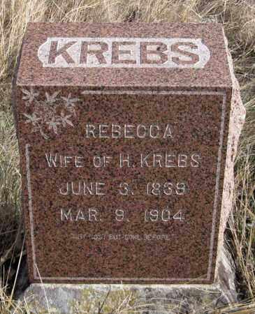 KREBS, REBECCA - Dundy County, Nebraska | REBECCA KREBS - Nebraska Gravestone Photos