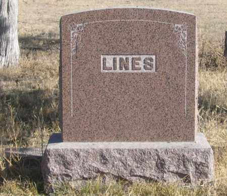 LINES, ULYSSES FAMILY GRAVE SITE - Dundy County, Nebraska | ULYSSES FAMILY GRAVE SITE LINES - Nebraska Gravestone Photos