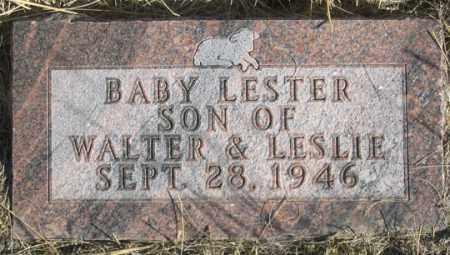 MCBRIDE, LESTER - Dundy County, Nebraska | LESTER MCBRIDE - Nebraska Gravestone Photos