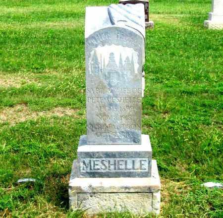 SCOTT MESHELLE, SYBIL R. - Dundy County, Nebraska | SYBIL R. SCOTT MESHELLE - Nebraska Gravestone Photos