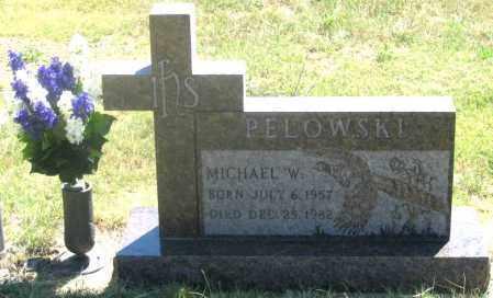 PELOWSKI, MICHAEL W. - Dundy County, Nebraska | MICHAEL W. PELOWSKI - Nebraska Gravestone Photos