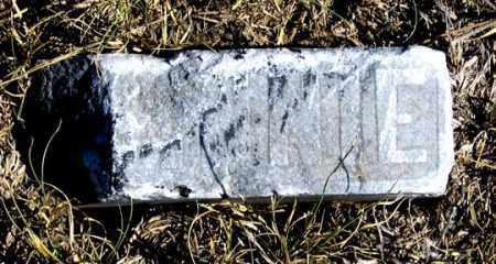 REYNOLDS, MINNIE - Dundy County, Nebraska   MINNIE REYNOLDS - Nebraska Gravestone Photos