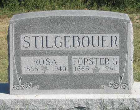 STILGEBOUER, ROSA - Dundy County, Nebraska | ROSA STILGEBOUER - Nebraska Gravestone Photos