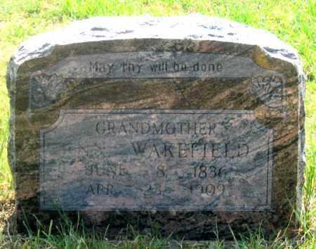 WAKEFIELD, ANN - Dundy County, Nebraska | ANN WAKEFIELD - Nebraska Gravestone Photos