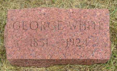 WHITE, GEORGE - Dundy County, Nebraska | GEORGE WHITE - Nebraska Gravestone Photos