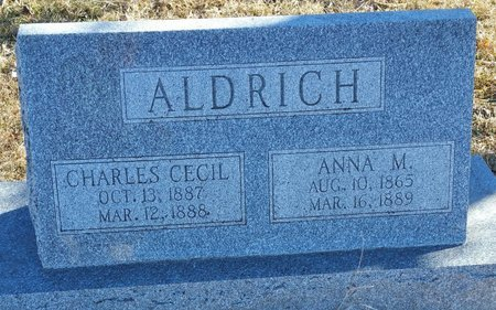 ALDRICH, CHARLES CECIL - Fillmore County, Nebraska | CHARLES CECIL ALDRICH - Nebraska Gravestone Photos