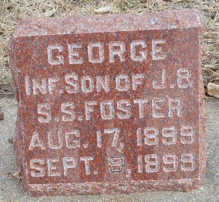 FOSTER, GEORGE - Fillmore County, Nebraska | GEORGE FOSTER - Nebraska Gravestone Photos