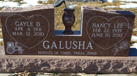ACKERMAN GALUSHA, NANCY LEE - Fillmore County, Nebraska | NANCY LEE ACKERMAN GALUSHA - Nebraska Gravestone Photos