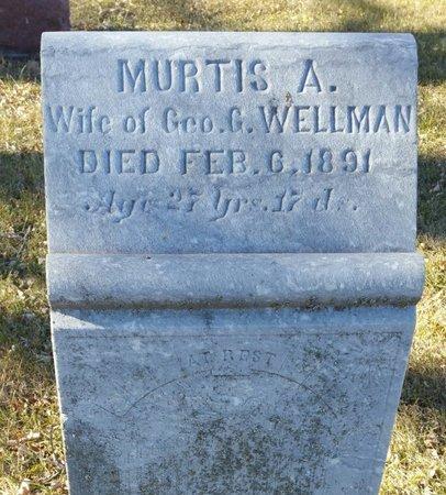 ALDRICH WELLMAN, MURTUS - Fillmore County, Nebraska | MURTUS ALDRICH WELLMAN - Nebraska Gravestone Photos