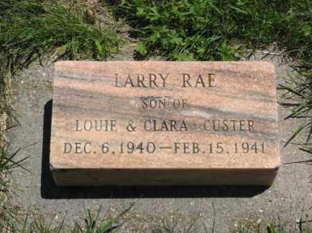 CUSTER, LARRY RAE - Franklin County, Nebraska | LARRY RAE CUSTER - Nebraska Gravestone Photos
