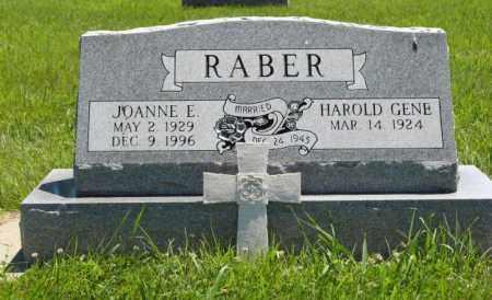 RABER, JOANNE E. - Franklin County, Nebraska | JOANNE E. RABER - Nebraska Gravestone Photos
