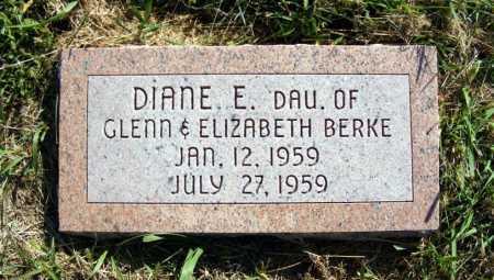 BERKE, DIANE E. - Frontier County, Nebraska | DIANE E. BERKE - Nebraska Gravestone Photos