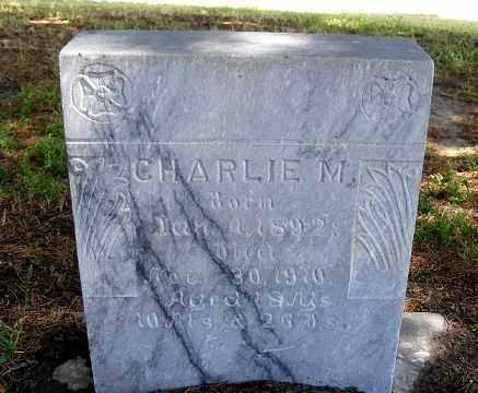 BURNETT, CHARLIE M. - Frontier County, Nebraska   CHARLIE M. BURNETT - Nebraska Gravestone Photos