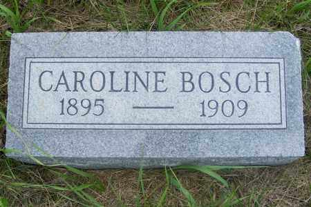 BOSCH, CAROLINE - Frontier County, Nebraska   CAROLINE BOSCH - Nebraska Gravestone Photos