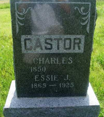 CASTOR, CHARLES - Frontier County, Nebraska | CHARLES CASTOR - Nebraska Gravestone Photos