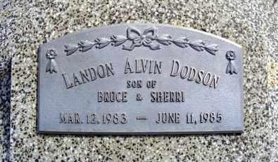 DODSON, LANDON ALVIN - Frontier County, Nebraska | LANDON ALVIN DODSON - Nebraska Gravestone Photos