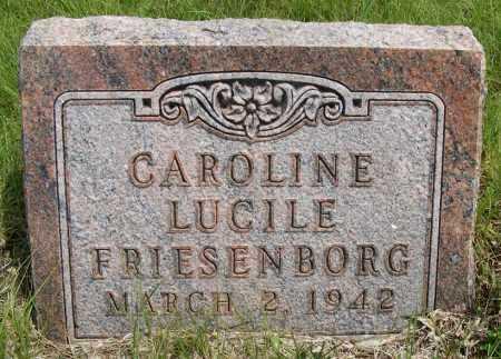 FRIESENBORG, CAROLINE LUCILE - Frontier County, Nebraska | CAROLINE LUCILE FRIESENBORG - Nebraska Gravestone Photos