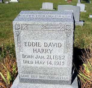 HARRY, EDDIE DAVID - Frontier County, Nebraska | EDDIE DAVID HARRY - Nebraska Gravestone Photos