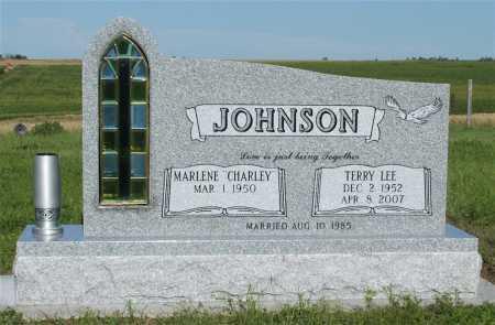 JOHNSON, TERRY LEE - Frontier County, Nebraska   TERRY LEE JOHNSON - Nebraska Gravestone Photos