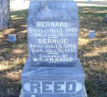 REED, BERNARD - Frontier County, Nebraska | BERNARD REED - Nebraska Gravestone Photos
