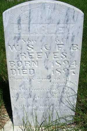 REEVES, CHARLEY - Frontier County, Nebraska | CHARLEY REEVES - Nebraska Gravestone Photos