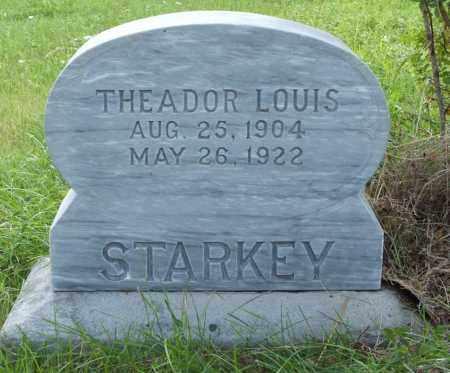 STARKEY, THEADOR LOUIS - Frontier County, Nebraska | THEADOR LOUIS STARKEY - Nebraska Gravestone Photos