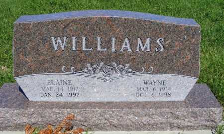 WILLIAMS, ELAINE - Frontier County, Nebraska | ELAINE WILLIAMS - Nebraska Gravestone Photos